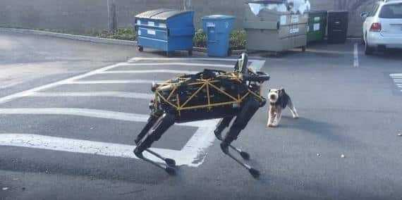 Google's robot dog meets a real dog and gets trash-talked